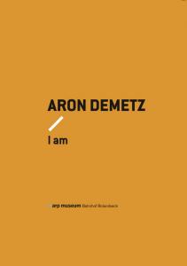 Aron Demetz - I Am, Salon Verlag 2014